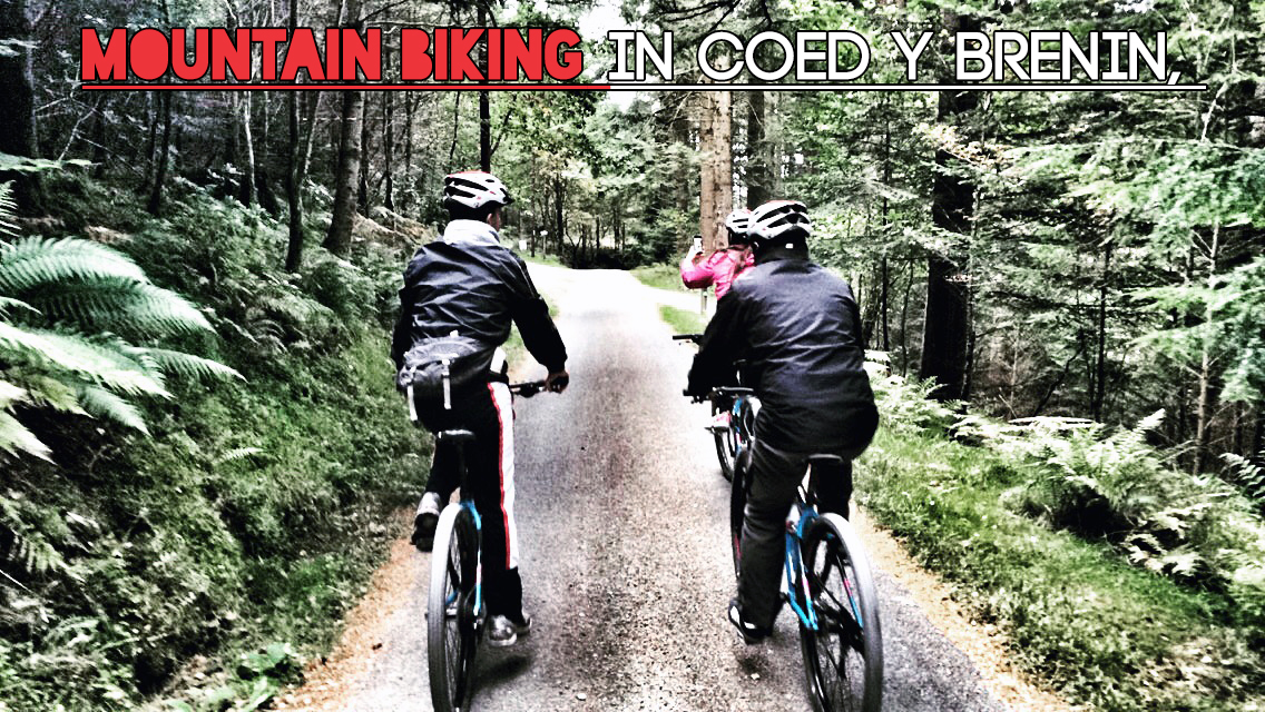 Mountain Biking in Coed y Brenin