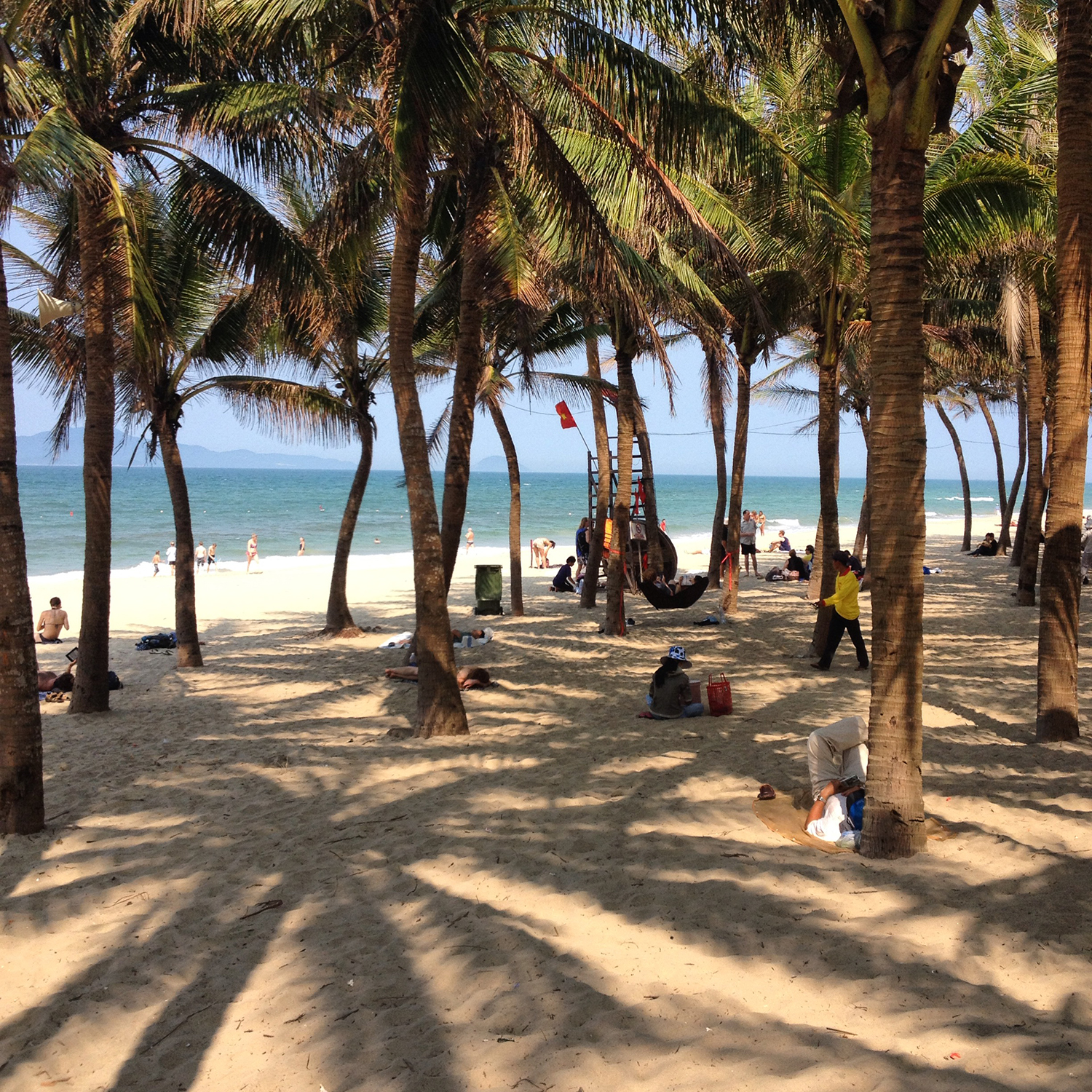An Bang beach palm trees, Hoi An