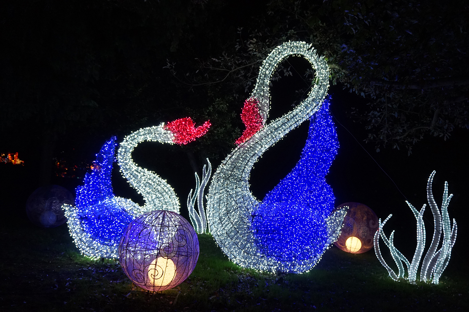 magical_lantern_festival_chiswick_16